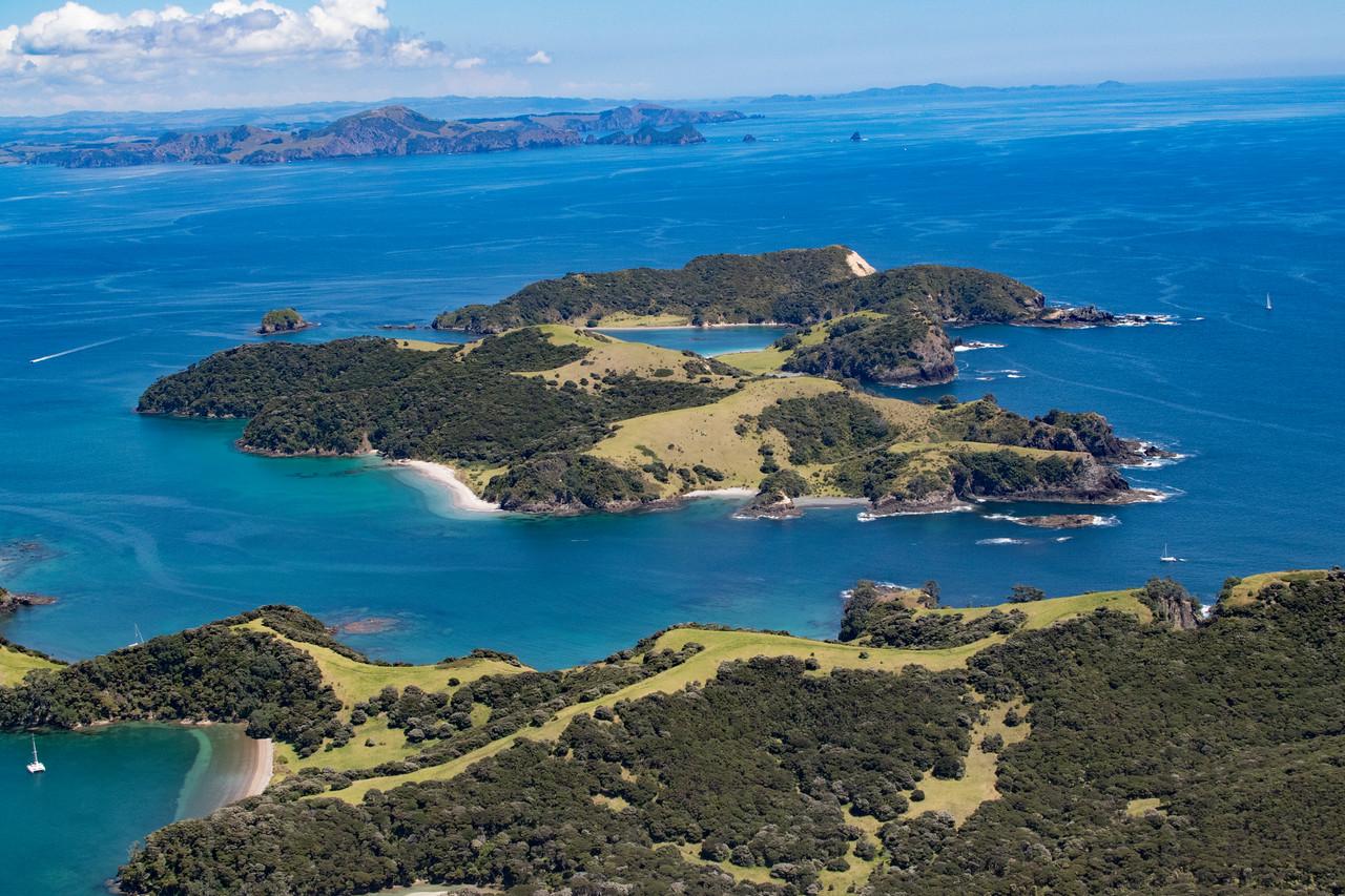NZ_BayofIslands-5576