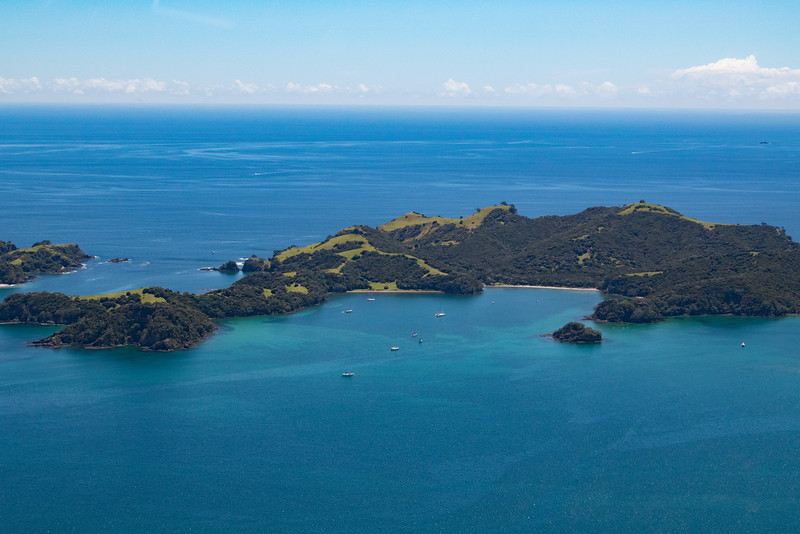 NZ_BayofIslands-5567