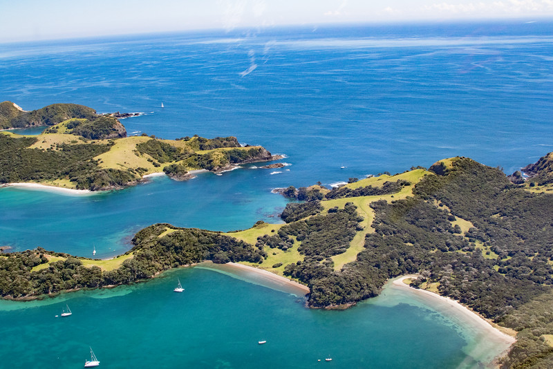 NZ_BayofIslands-5573