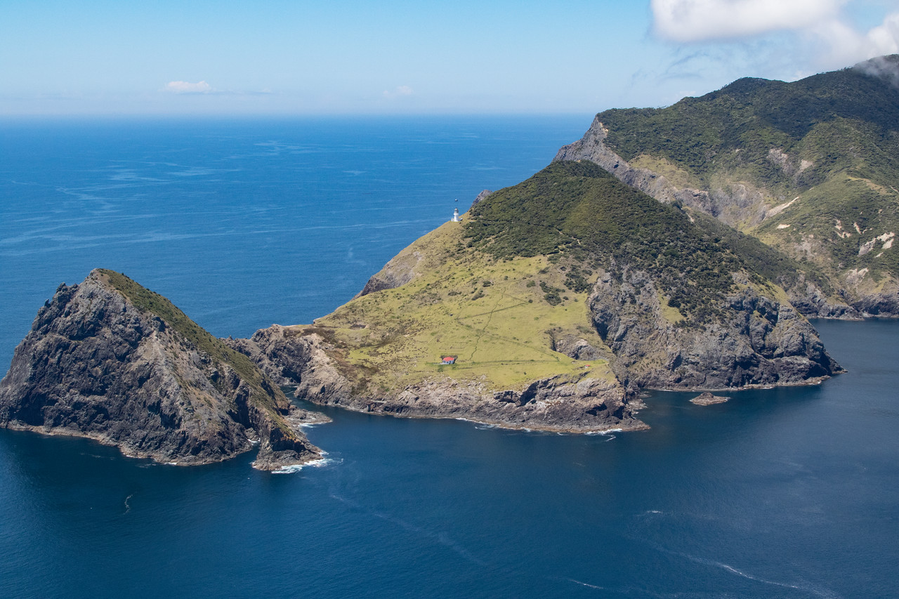 NZ_BayofIslands-5598