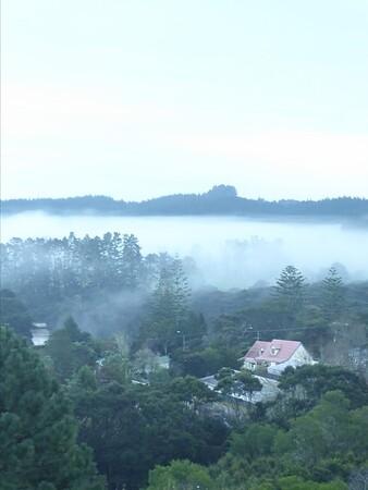 Misty Bay Morning