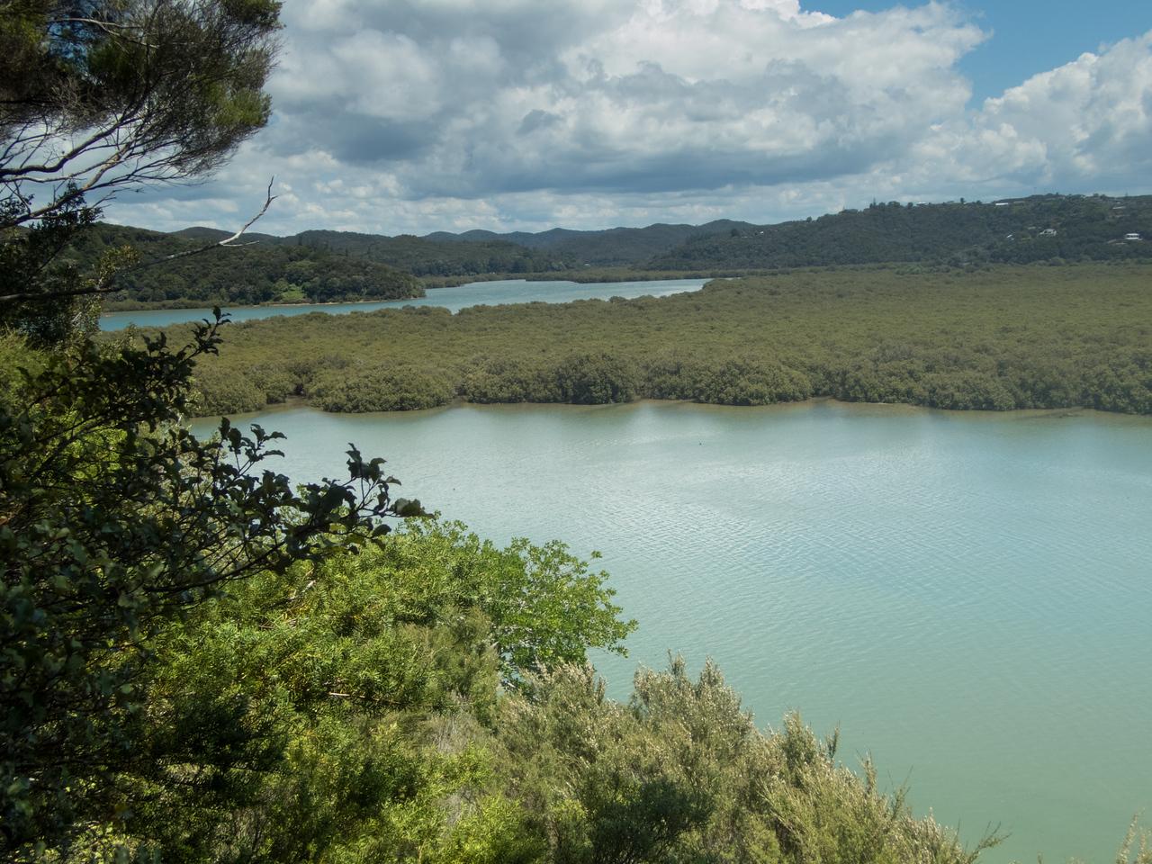 Waitangi-060016