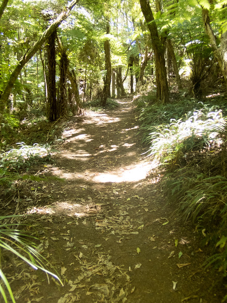 Waitangi-060014