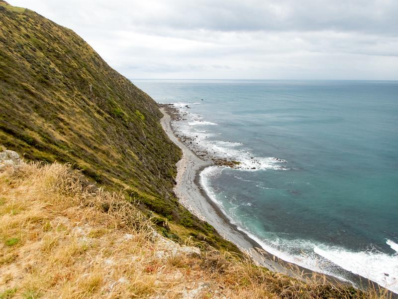 NZ_Makara-110097