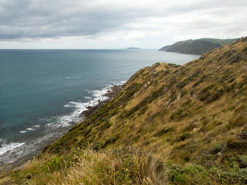 NZ_Makara-110098