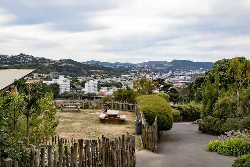 Wellington-2672