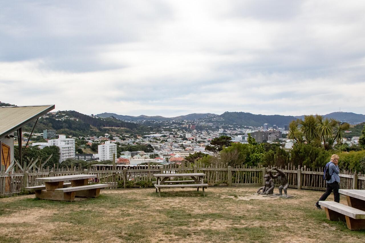 Wellington-2664