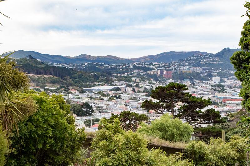 Wellington-2663
