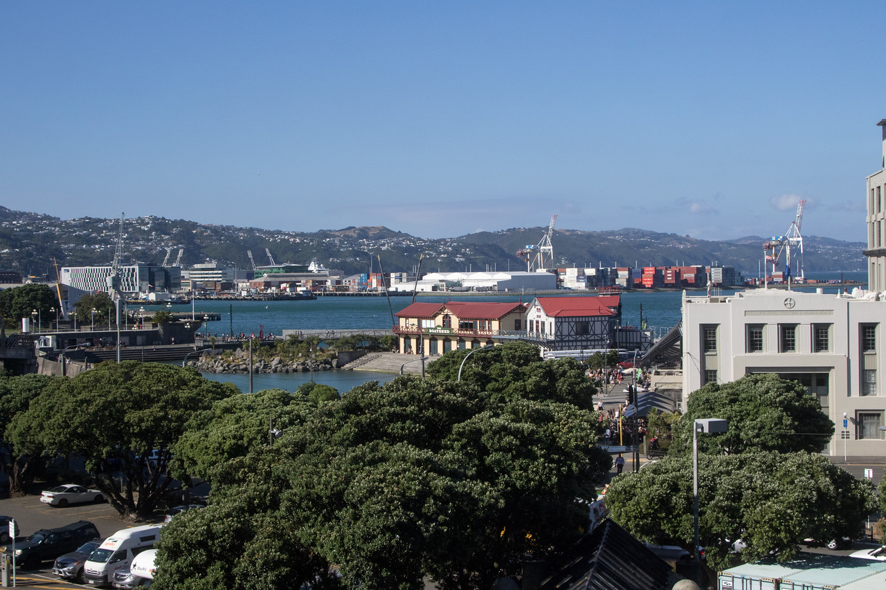Wellington-2484
