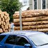 Logging truck passing through downtown Dunedin.
