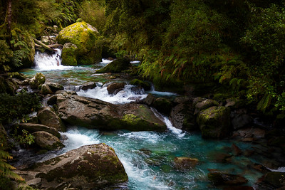 Milford Track Rapids