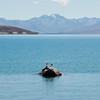 1010828 Wanaka to Christchurch Lake Tekapo