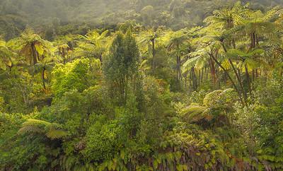 Rotorua, Hot Springs, Touragiro NP, Taupo Volcanic Zone, Huka Falls