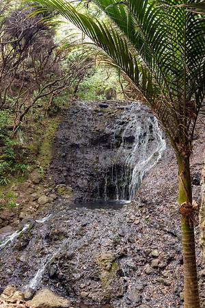 Opal Pool Stream Cascade