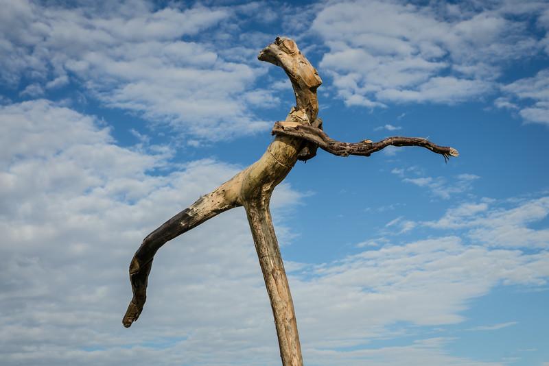Driftwood sculpture, Hotikita beach, West Coast South Island New Zealand