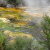 Wai-O-Tapu Thermal hot spring