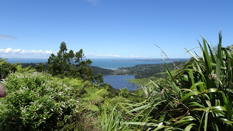 Arataki park looking at Manukau Harbour