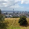 Auckland, a camera phone shot.