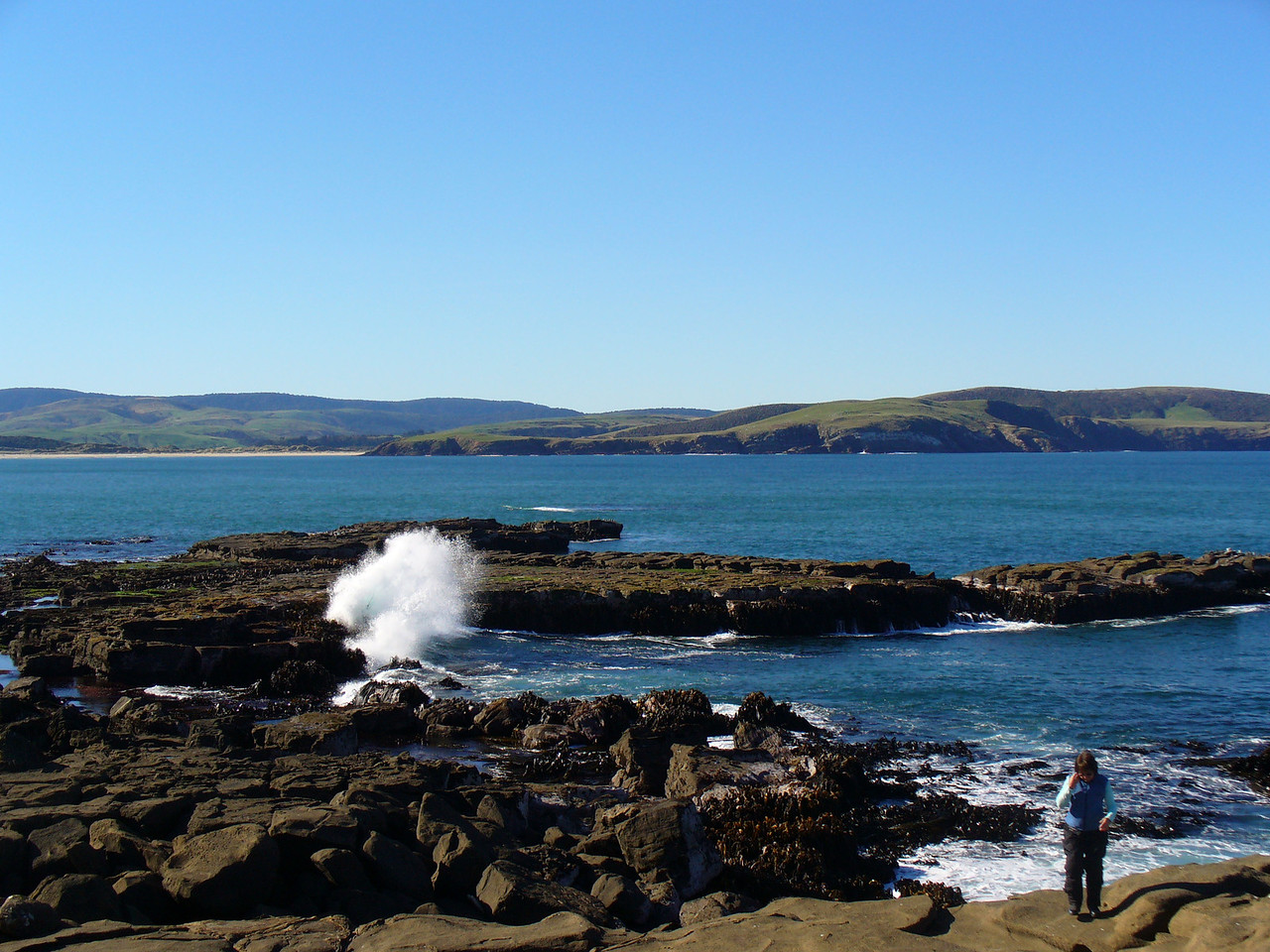 Coastal Catlins