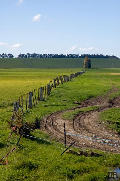 Rural scene near Mt. Herbert