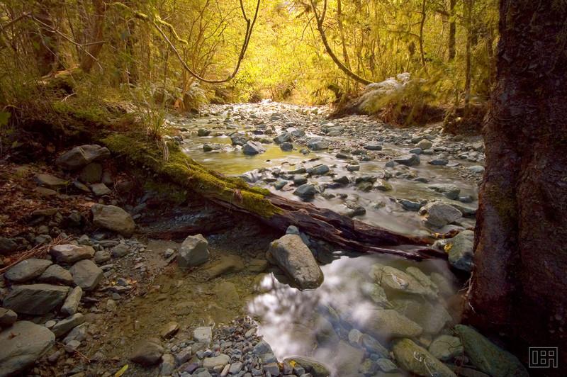 Creek near Lake Gunn
