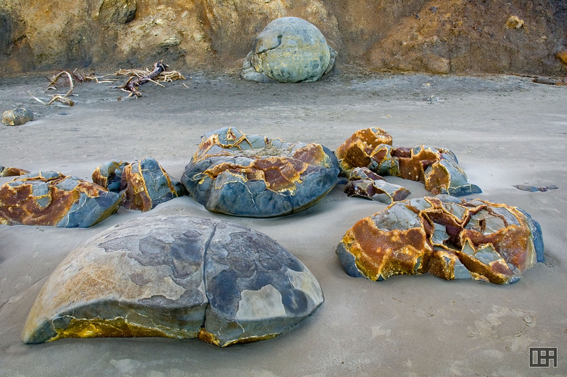 The remains of some Moeraki Boulders