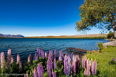 Lake Alexandria Mount John New Zealand