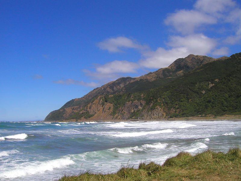 East Coast - near Kaikora