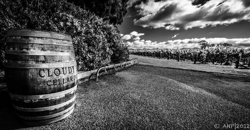Cloud Bay Vineyards