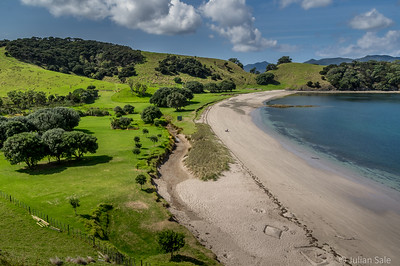 We took a ferry out to one of the islands and had a lovely hike around much of the island.  This is a camping beach.  Not crowded as you can see.  New Zealand is not a crowded place.