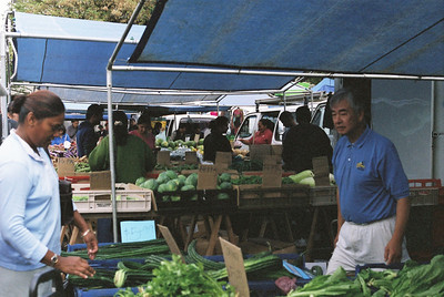 Market on North Island