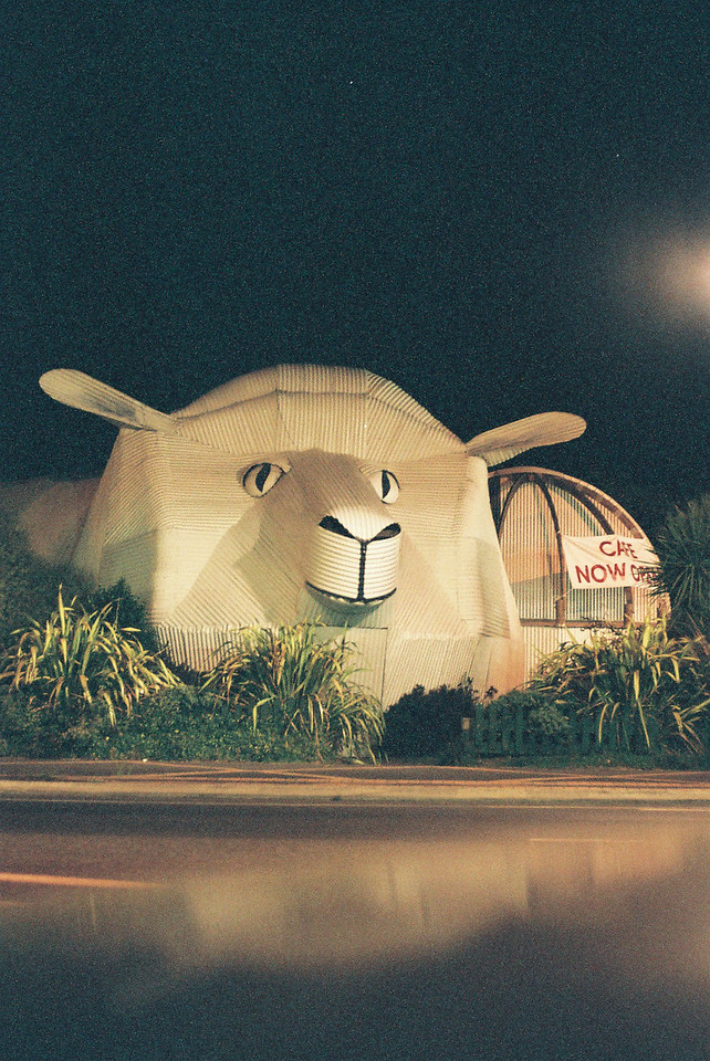 Giant Sheep Store