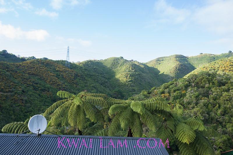 NewZealand2013_KwaiLam-01621