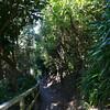NewZealand_Wellington_KwaiLam2013-00324