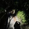 NewZealand_Wellington_KwaiLam2013-00326