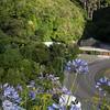 NewZealand2013_KwaiLam-01633