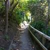 NewZealand_Wellington_KwaiLam2013-00320