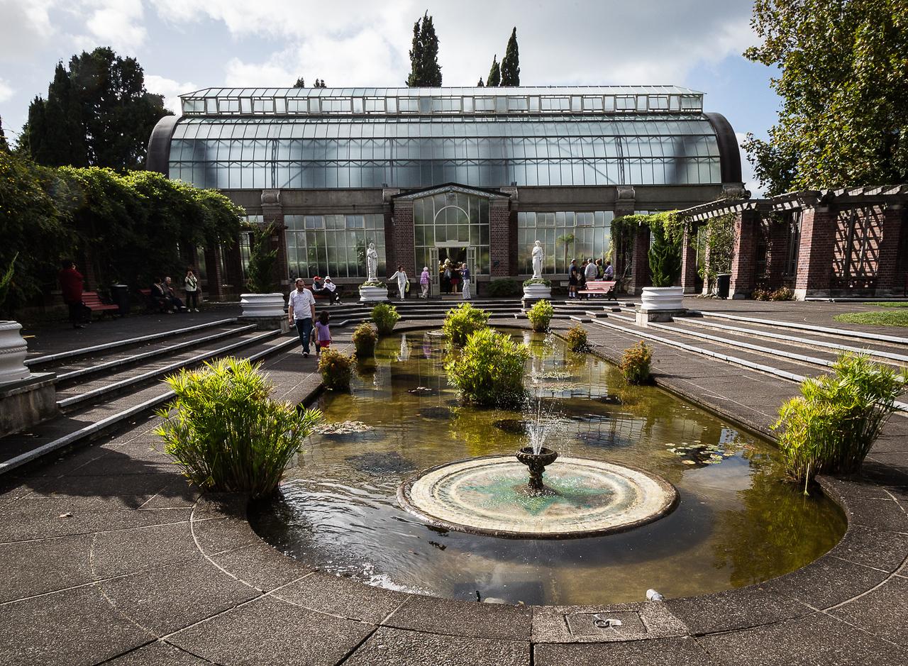 Botanical Gardens in Auckland