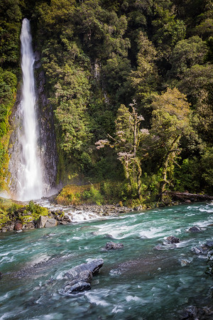 Thunder Creek Falls and the Haast River