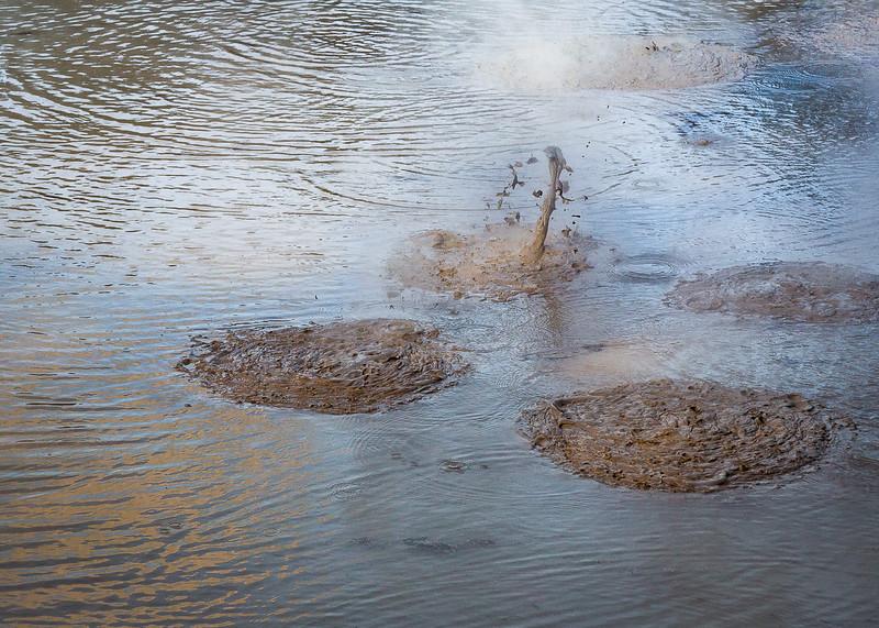 Hot Mud pools in Rotorua
