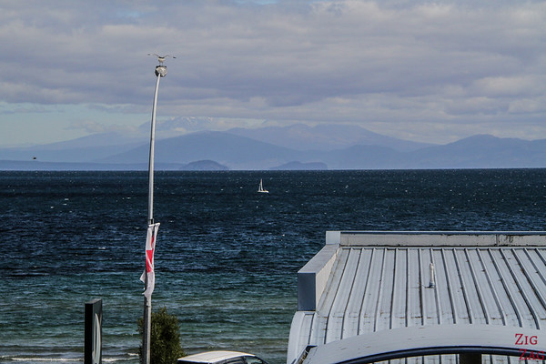 Accommodation in Taupo 2