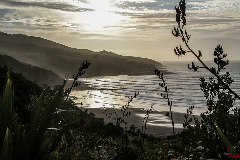 Nouvelle-Zélande Plages photos - Nganurui 1