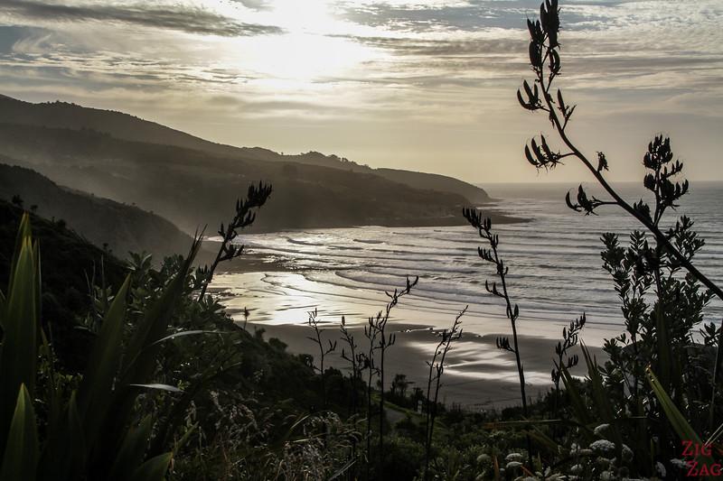 Stunning beach in new Zealand North island - Nganurui