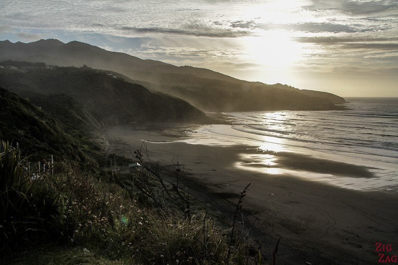 Nganurui beach Raglan NZ