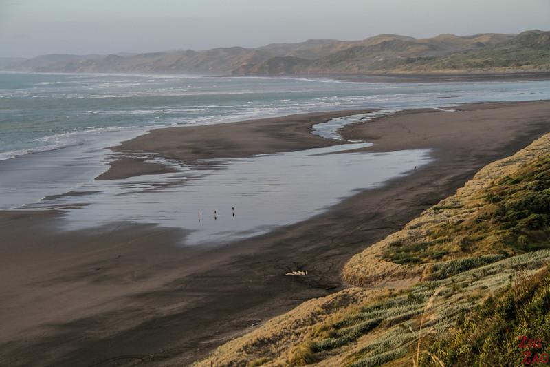 Stunning beach in new Zealand North island - Nganurui 2