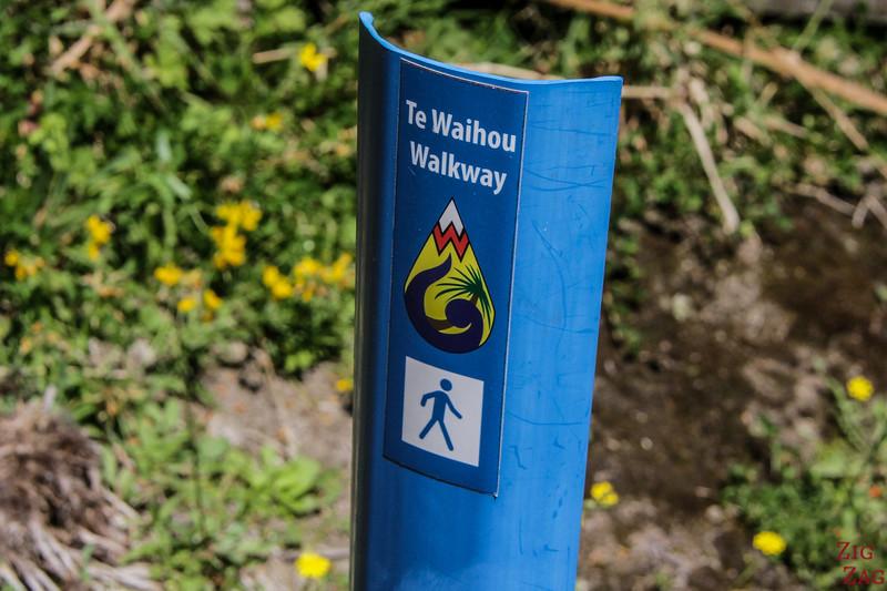 Te Waihou Walkway Nouvelle Zélande 1