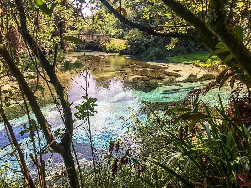 Humarana springs New Zealand