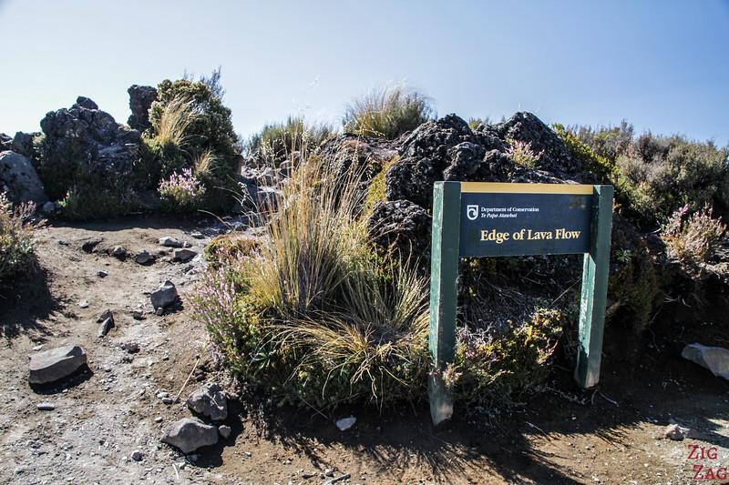 Taranaki Falls - Le bord de la coulée de lave 2