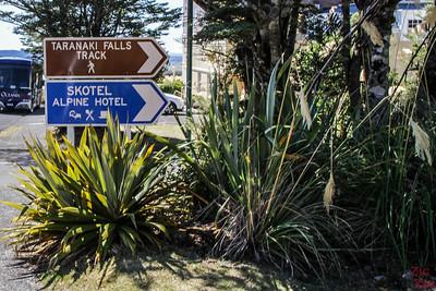 Début de la randonnée des chutes Taranaki - sentier supérieur (upper Track) ou inférieur (Lower Track) 1