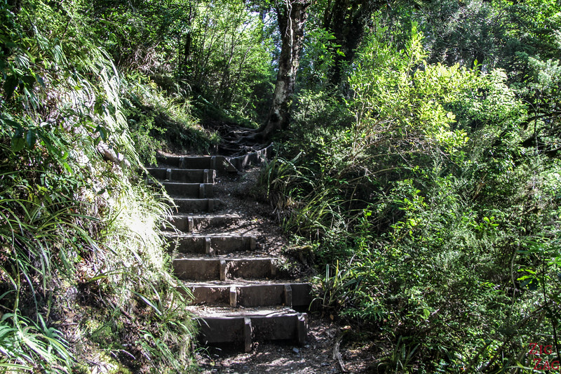Difficulty of the Taranaki falls hike - staircase 3